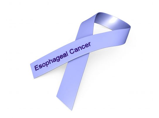 0914 Blue Ribbon For Esophageal Cancer Awareness Stock