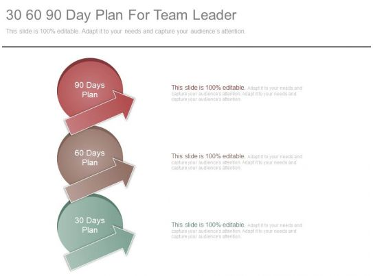 30 60 90 day business plan for managers