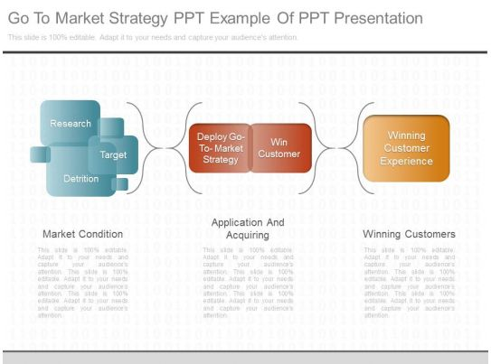 A Go To Market Strategy Ppt Example Of Ppt Presentation