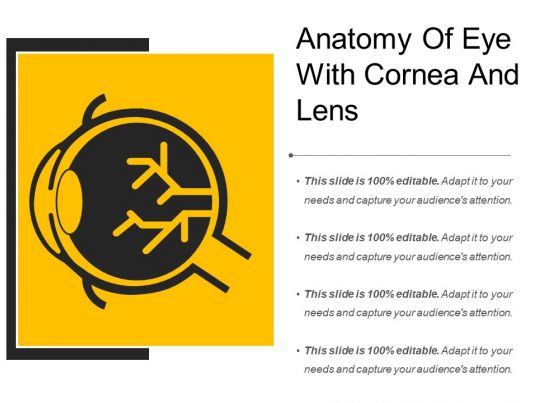 Anatomy Of Eye With Cornea And Lens Powerpoint Presentation