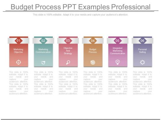 budget process ppt examples professional