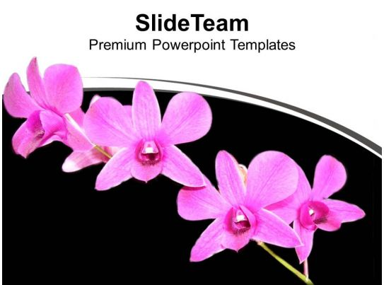 Bunch Of Flowers Black Background Powerpoint Templates Ppt Themes