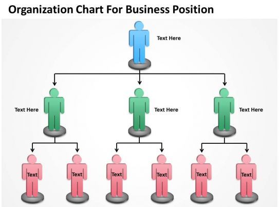 Business Activity Diagram Organization Chart For Position