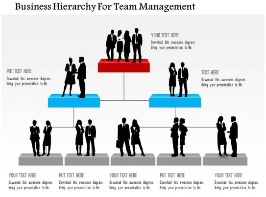 Business Hierarchy For Team Management Powerpoint