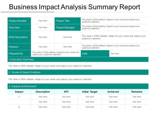 business impact analysis summary report