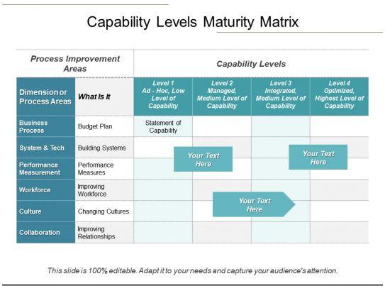 100+ Organization Capability Matrix Example – yasminroohi