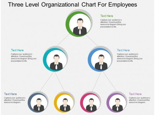 cj three level organizational chart for employees flat powerpoint design ppt images gallery. Black Bedroom Furniture Sets. Home Design Ideas