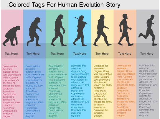 Colored Tags For Human Evolution Story Flat Powerpoint Design