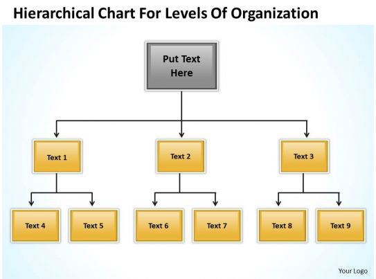 Company Structure Flow Chart Hierarchical For Levels Of Organization