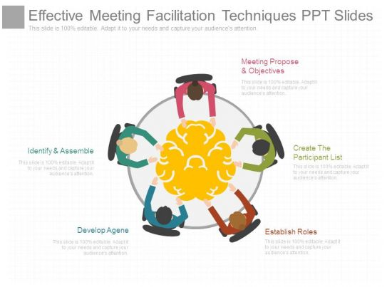 effective meeting facilitation techniques ppt slides