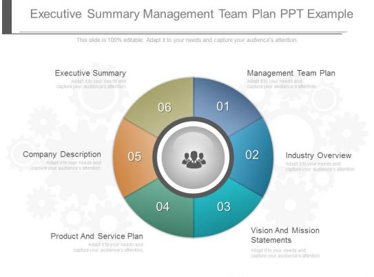 executive summary management team plan ppt example