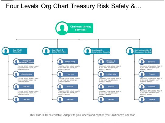 Four Levels Org Chart Treasury Risk Safety And Quality For