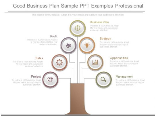 Examples for a Business Proposal Presentation