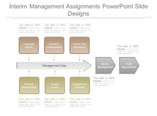 interim assignments