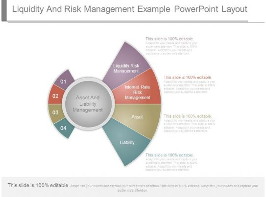 liquidity and risk management example powerpoint layout