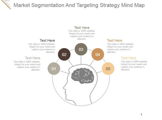 market segmentation and targeting strategy mind map ppt ideas