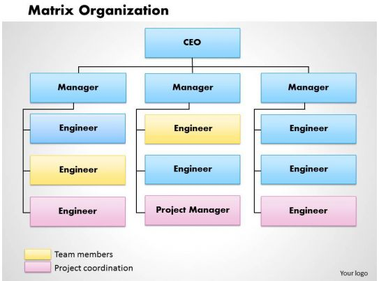 Matrix Organization Powerpoint Presentation Slide Template Slide01
