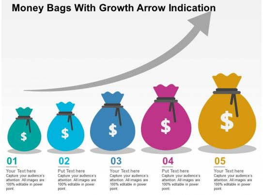 money bags with growth arrow indication flat powerpoint