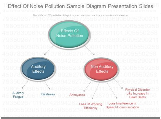 one effect of noise pollution sample diagram presentation