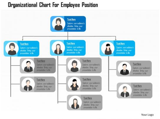 Organizational Chart For Employee Position Flat Powerpoint