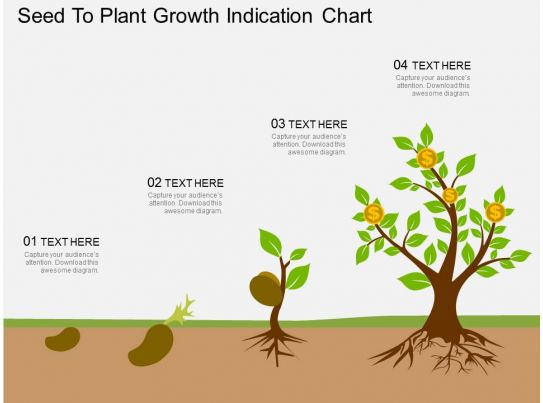 Plant Growth Chart Template - Apigram.Com