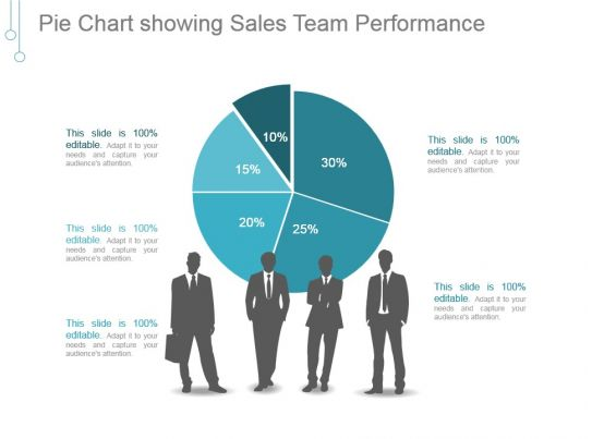 pie chart showing sales team performance ppt examples
