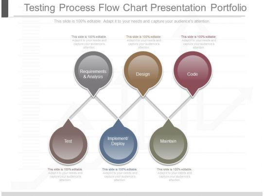 Ppts Testing Process Flow Chart Presentation Portfolio Powerpoint
