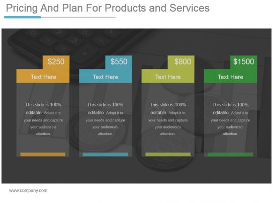 pricing and plan for products and services ppt example