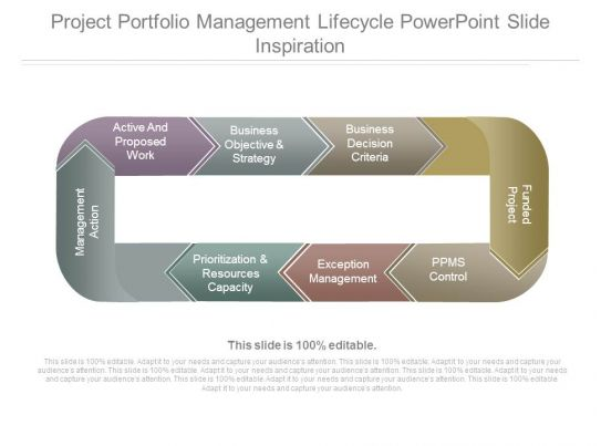 Project Portfolio Management Lifecycle Powerpoint Slide