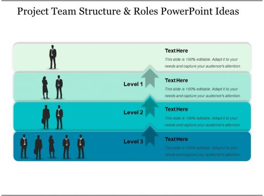 project team structure and roles powerpoint ideas