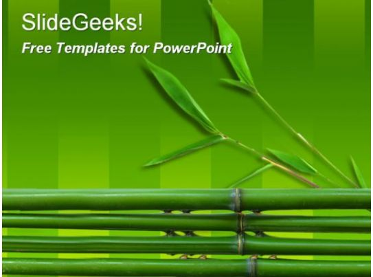 bamboo 0510 templates powerpoint presentation slides template