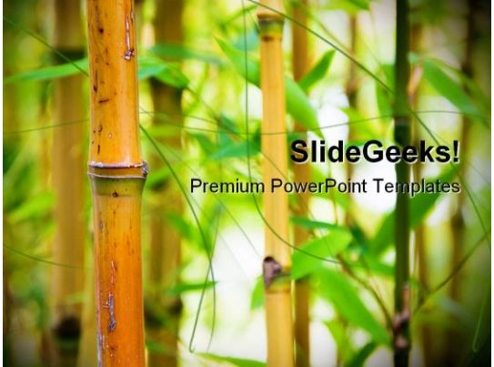 bamboo nature powerpoint templates and powerpoint