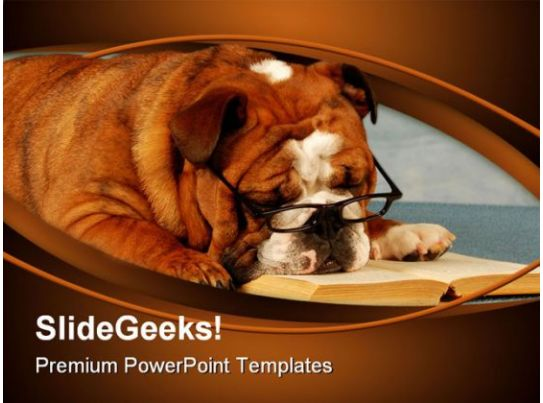 Bulldog Sleeping Animals Powerpoint Templates And