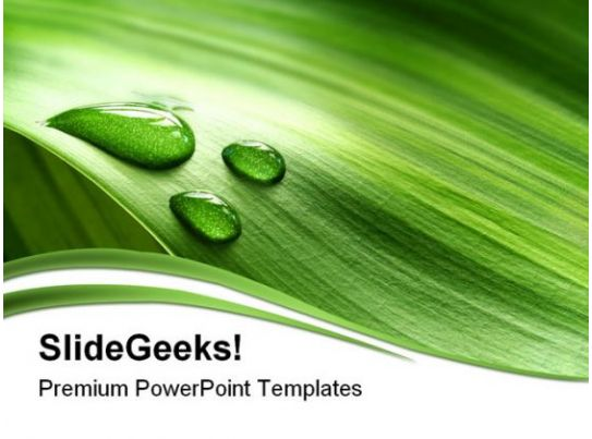 Nature PowerPoint Themes | Nature PowerPoint Templates ...