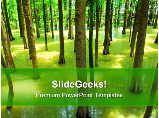 forest nature powerpoint template 1110 ppt images gallery