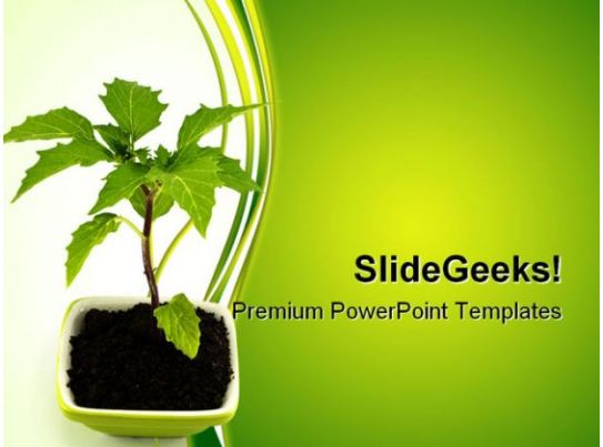 growing green plant nature powerpoint templates and