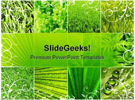 New Life Nature Powerpoint Template 0910 | Powerpoint Templates