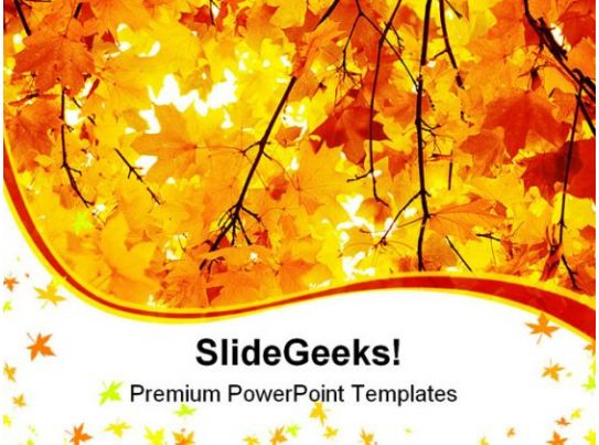 maple in autumn forest nature powerpoint templates and