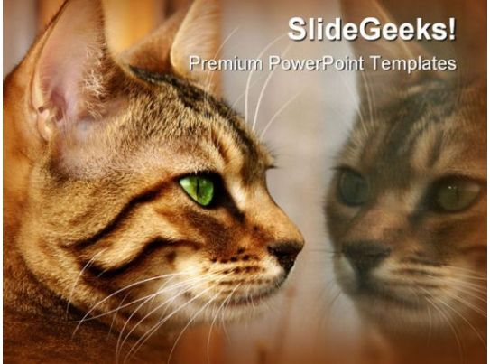 reflections animals powerpoint templates and powerpoint