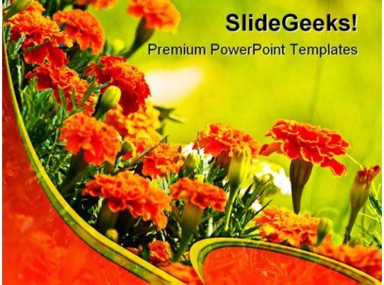 Ppt Presentation On Flowering Plants Flowers Healthy