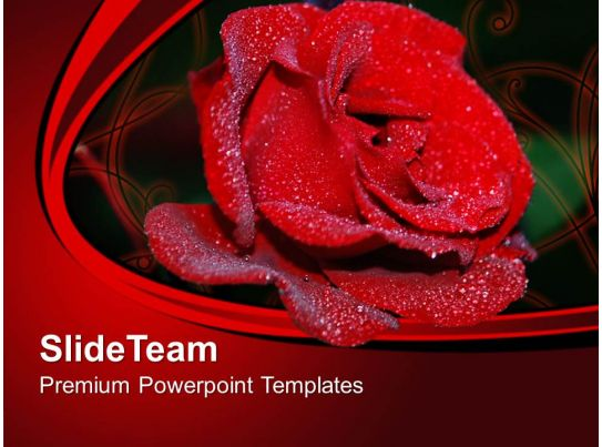 Red Rose Flower Beauty Powerpoint Templates Ppt Themes And