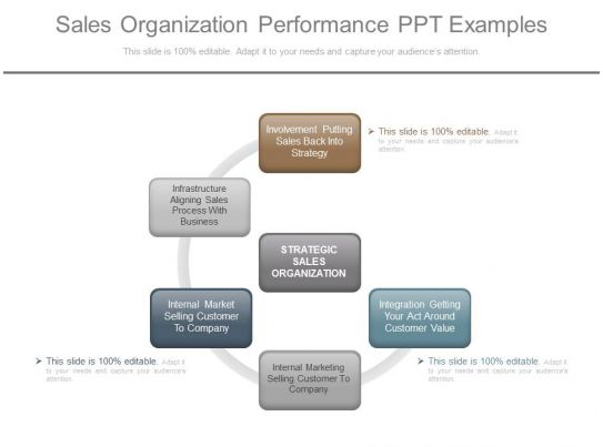 Sales organization performance ppt examples powerpoint for Sales team structure template