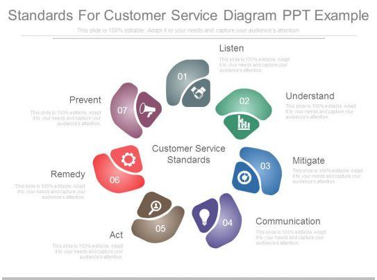 standards for customer service diagram ppt example. Black Bedroom Furniture Sets. Home Design Ideas