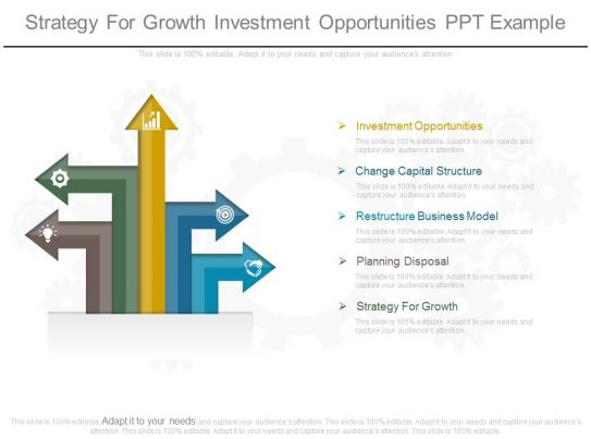strategy for growth investment opportunities ppt example