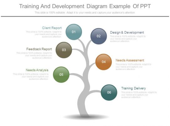 training and development diagram example of ppt