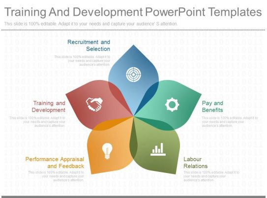 orientation powerpoint presentation template - professional business slides showing training and development
