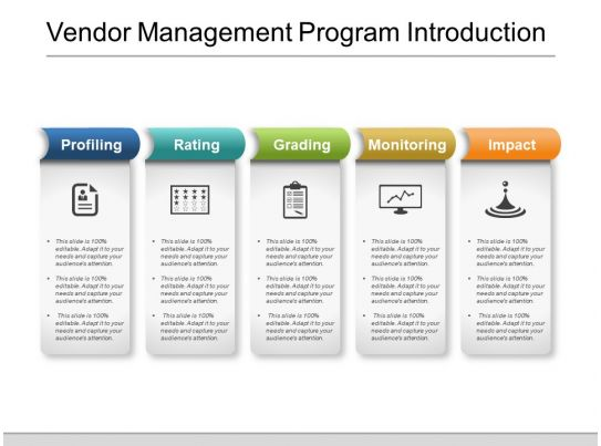 Vendor Management Program Introduction Powerpoint Shapes