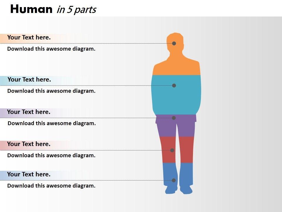 0414 Column Chart Human Body Illustration Powerpoint Graph