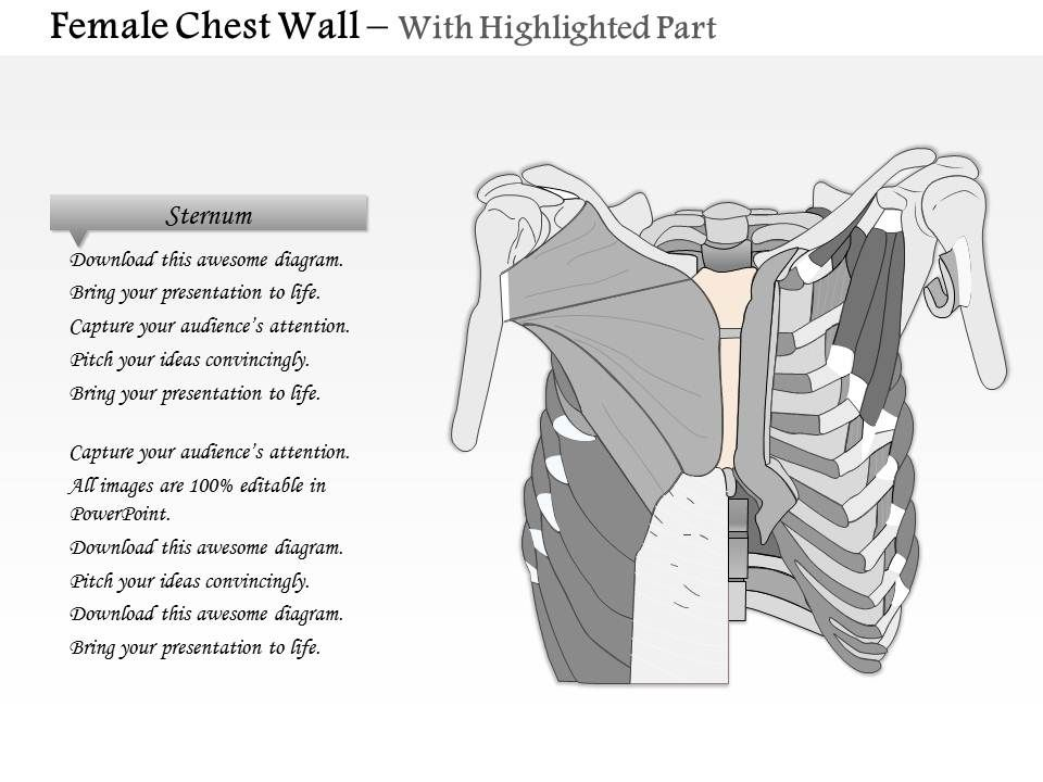 0514 Female Chest Wall Anterior View Medical Images For Powerpoint