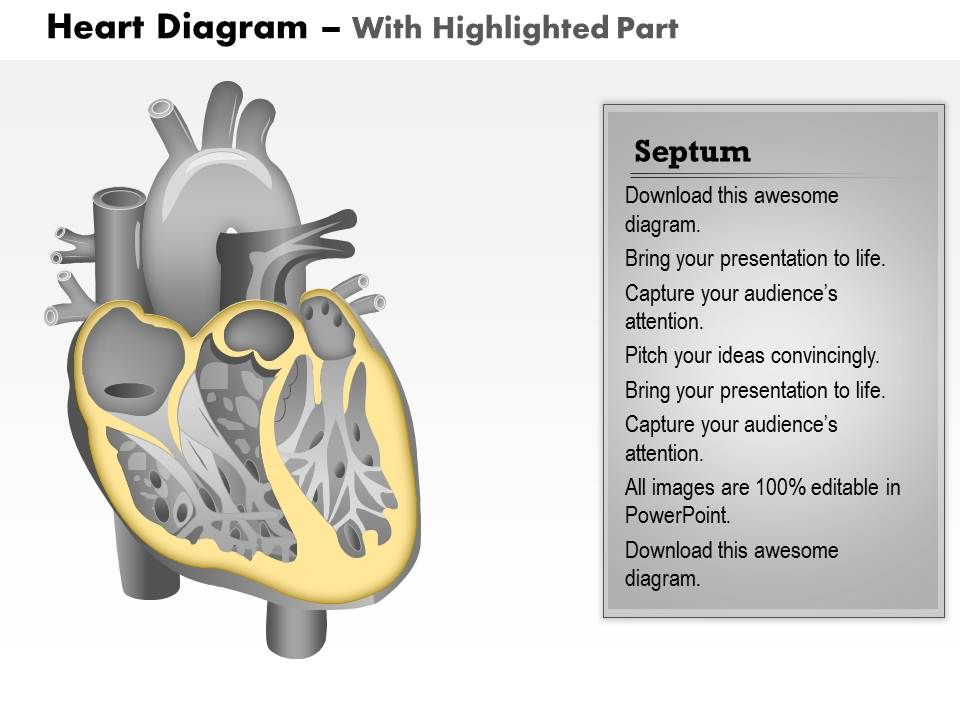 0514 Heart Human Anatomy Medical Images For PowerPoint ...